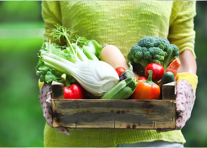 Shorter Supply Chains, Better Food, Healthier Economy | Sustainable PR Interviews Tangleroot Farms