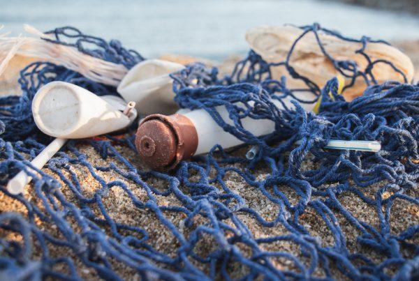 (re)x ocean plastic hangers